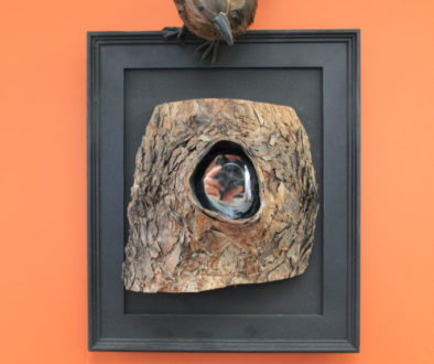 Bird Hole